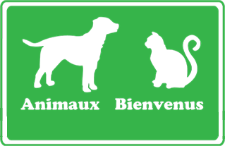 My Favorite Travel - Colombes - Transport animaliers